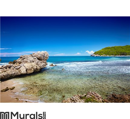 Caribbean beach and tropical sea Wall Mural Wall art Wall decor