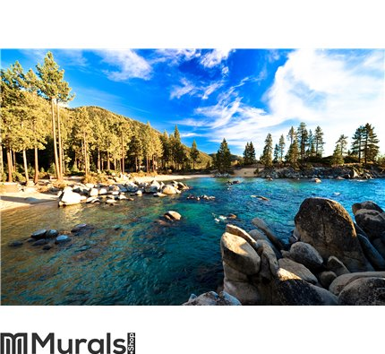 Lake Tahoe, California, USA Wall Mural Wall art Wall decor