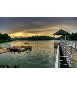 MacRitchie Reservoir Singapore Wall Mural