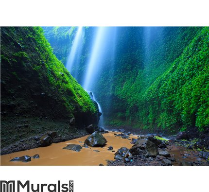 Madakaripura Waterfall, East Java Indonesia Wall Mural Wall art Wall decor