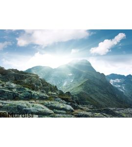 Mountain peaks Wall Mural Wall art Wall decor
