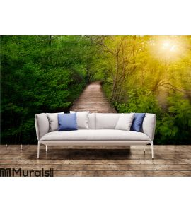 Deep forest pathway in the sunshine Wall Mural Wall art Wall decor
