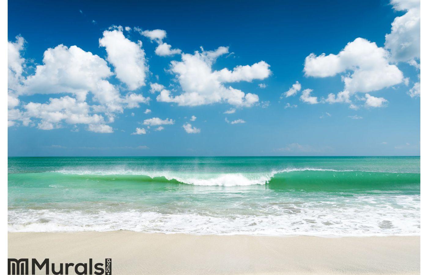 Gentle ocean waves wall mural amipublicfo Choice Image