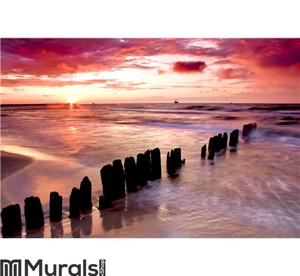 Love at seaside Wall Mural Wall art Wall decor