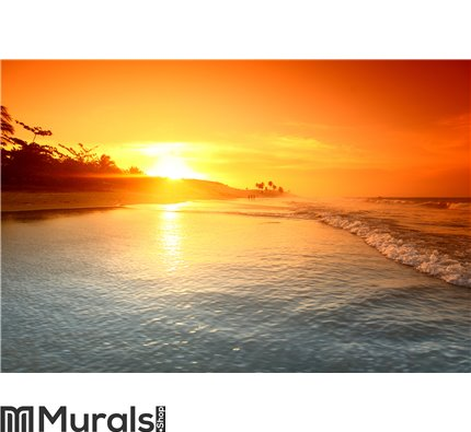 Ocean sunrise Wall Mural Wall art Wall decor