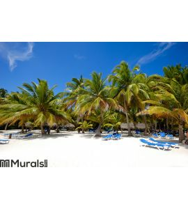 Paradise beach with palms and sunbeds Wall Mural