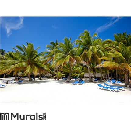 Paradise beach with palms and sunbeds Wall Mural Wall art Wall decor