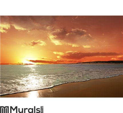 Red Sky in the Ocean Wall Mural Wall art Wall decor